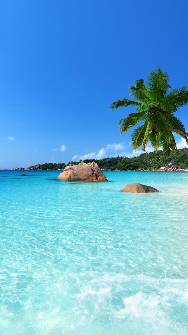 Wallpaper Anse Lazio, Praslin Island, Seychelles, Best