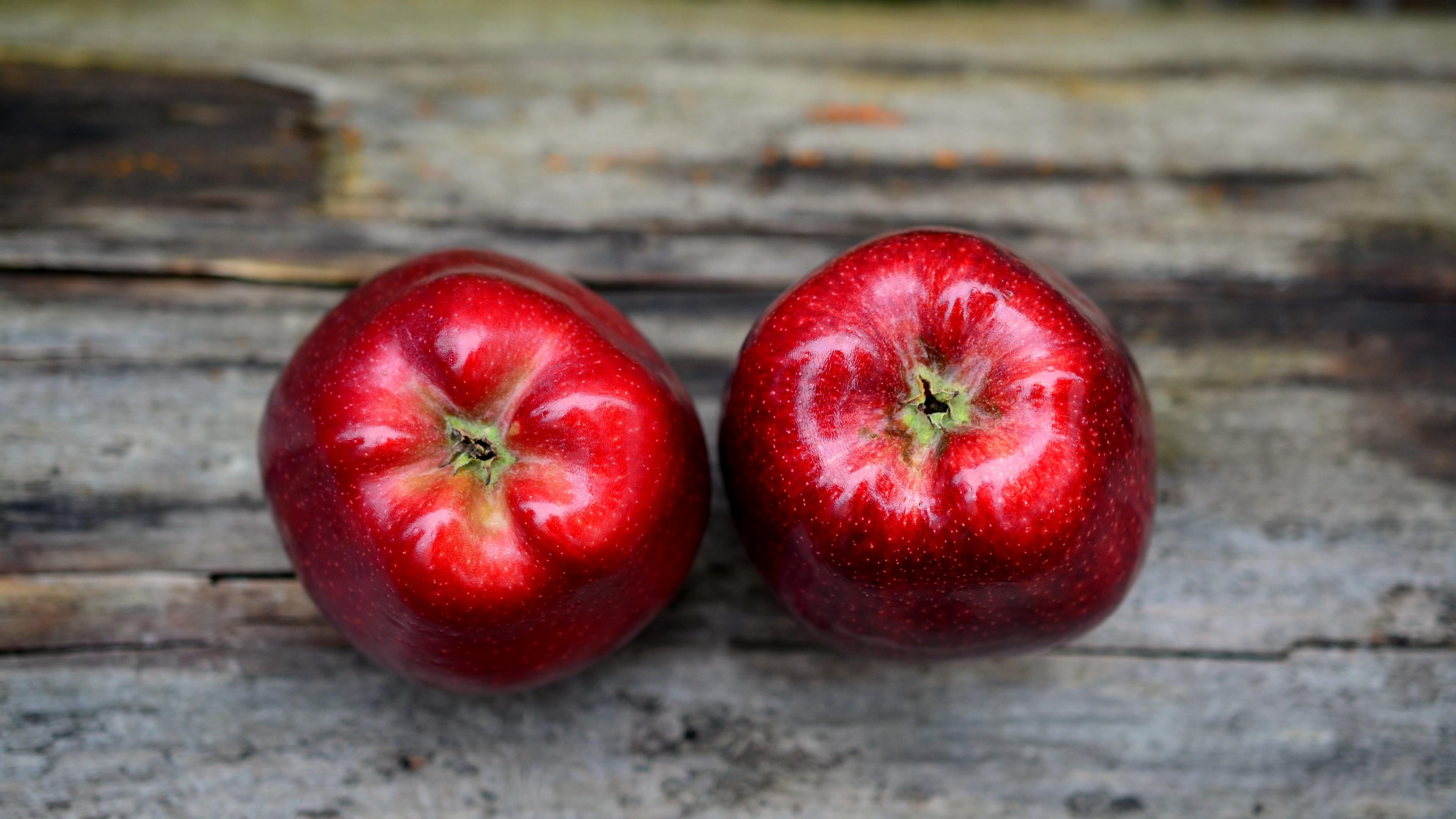wallpaper apples, 4k, food #15329