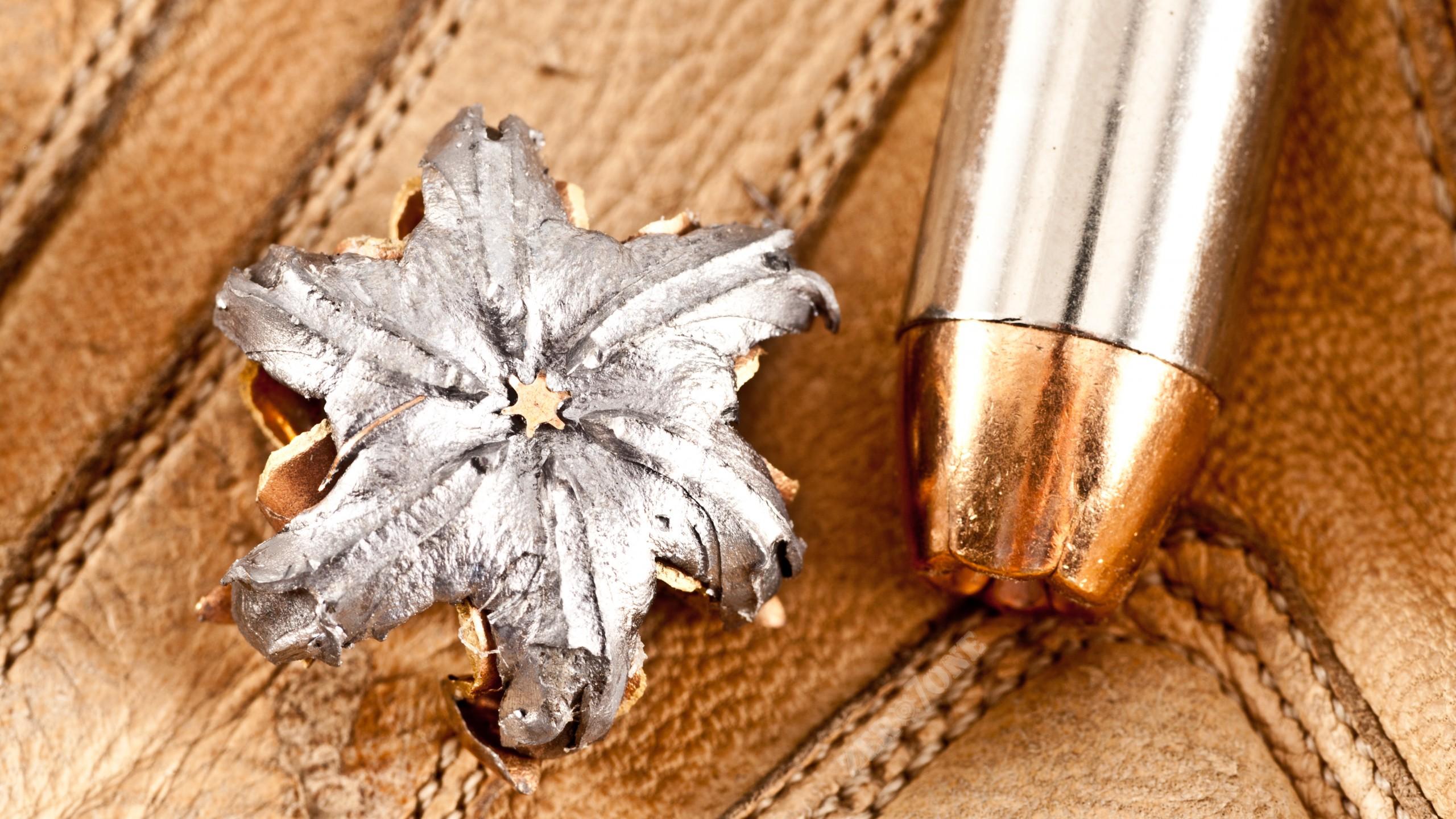 Wallpaper Bullet Close Up Mushroom Bullet Open Point