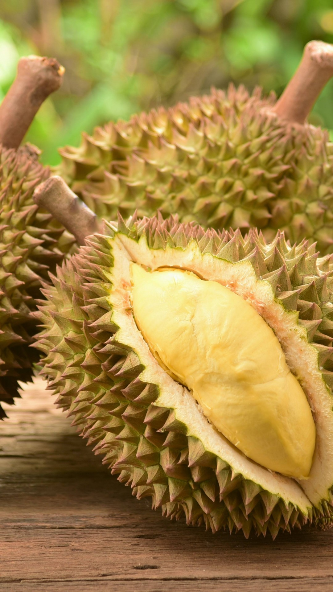 Wallpaper Durian Fruit 5k Food 15342