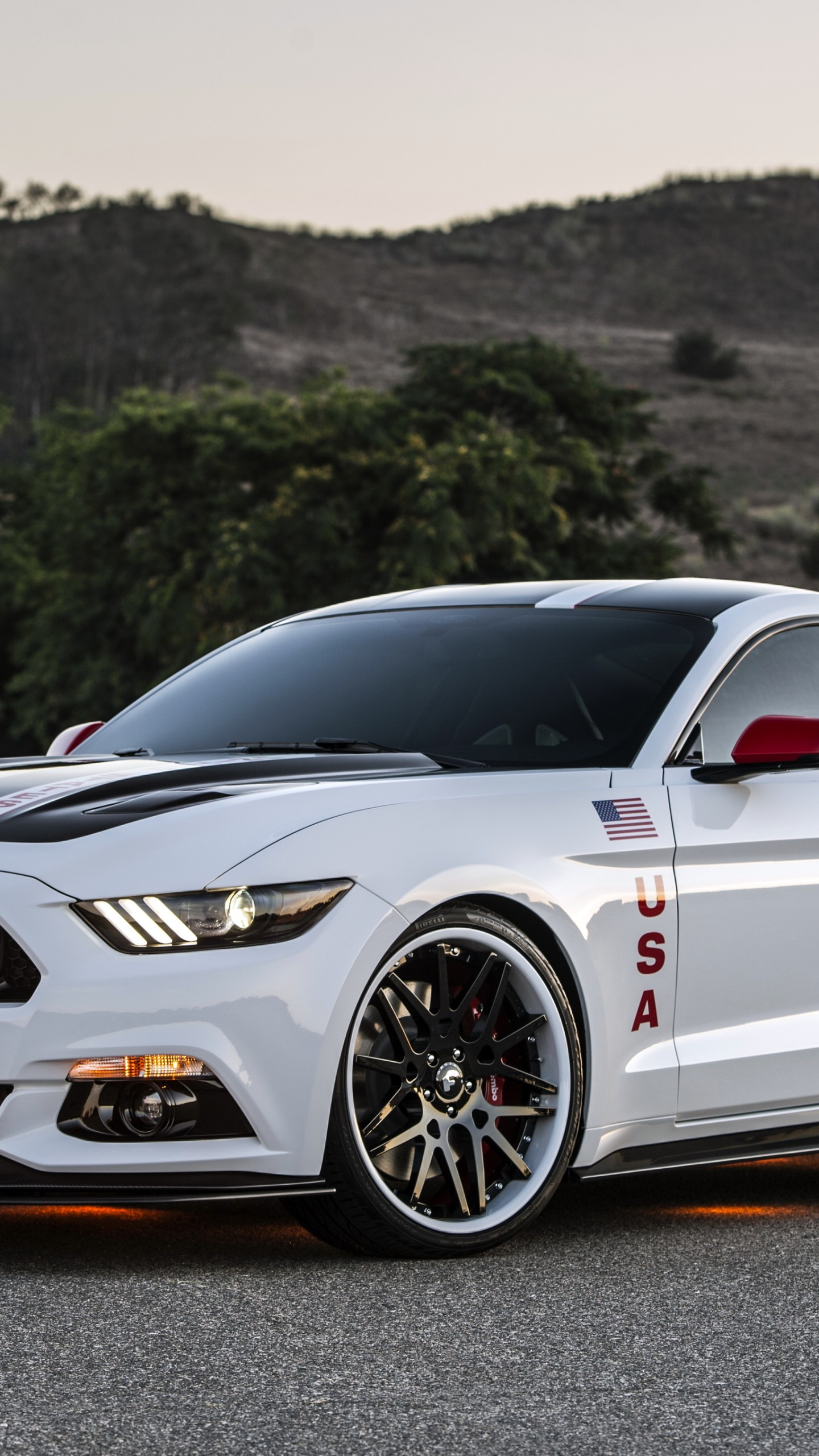 Nissan Luxury Brand >> Wallpaper Ford Mustang Apollo Edition, mustang, white ...