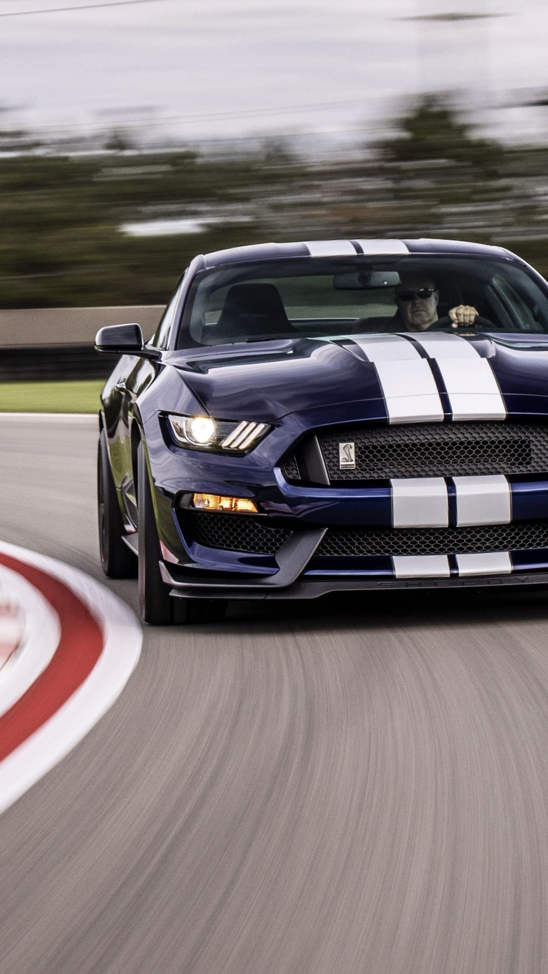 Wallpaper Ford Mustang Shelby GT350, 2019 Cars, 4K, Cars ...