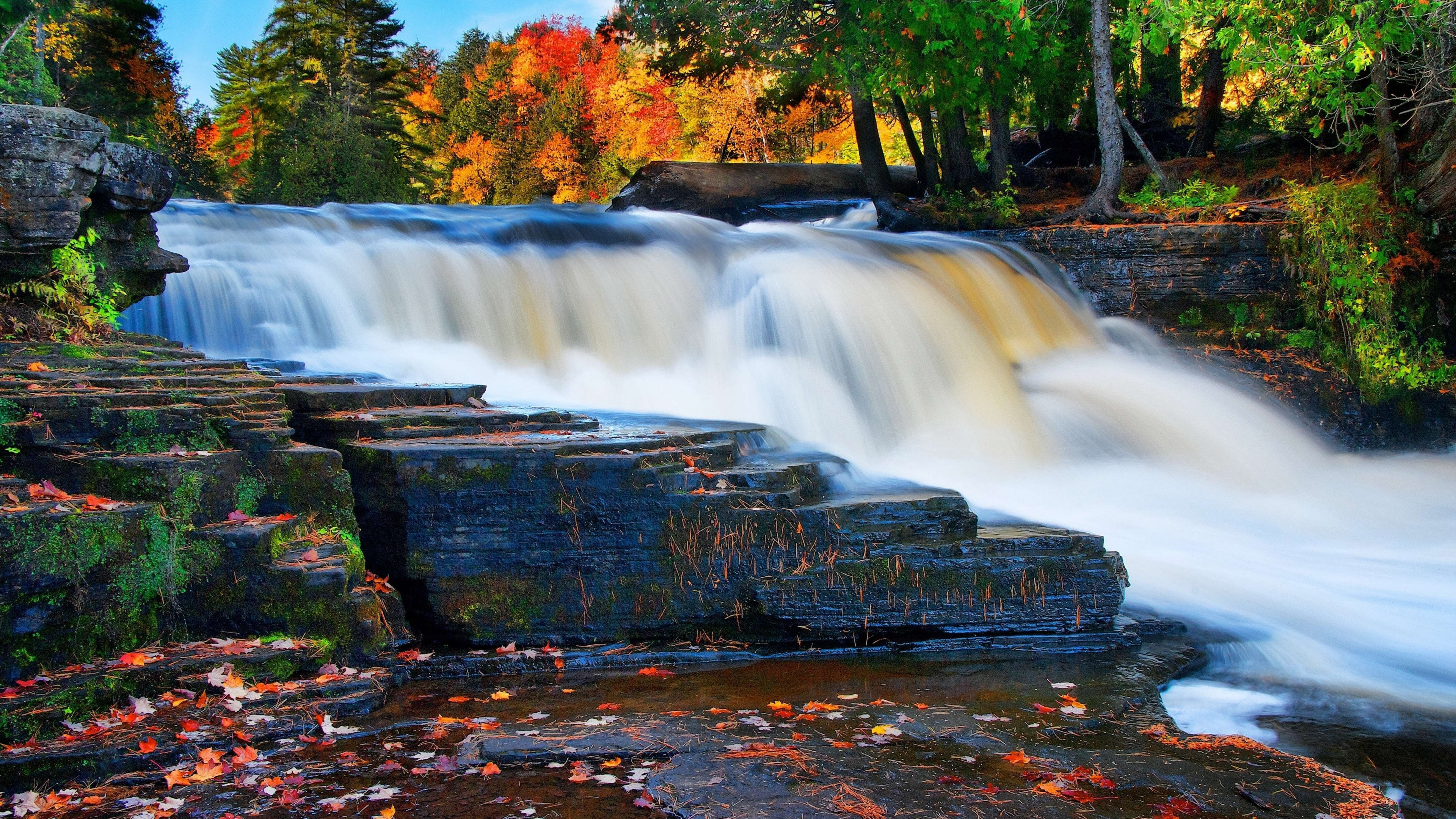Wallpaper Forest 5k 4k River Waterfall Autumn Nature