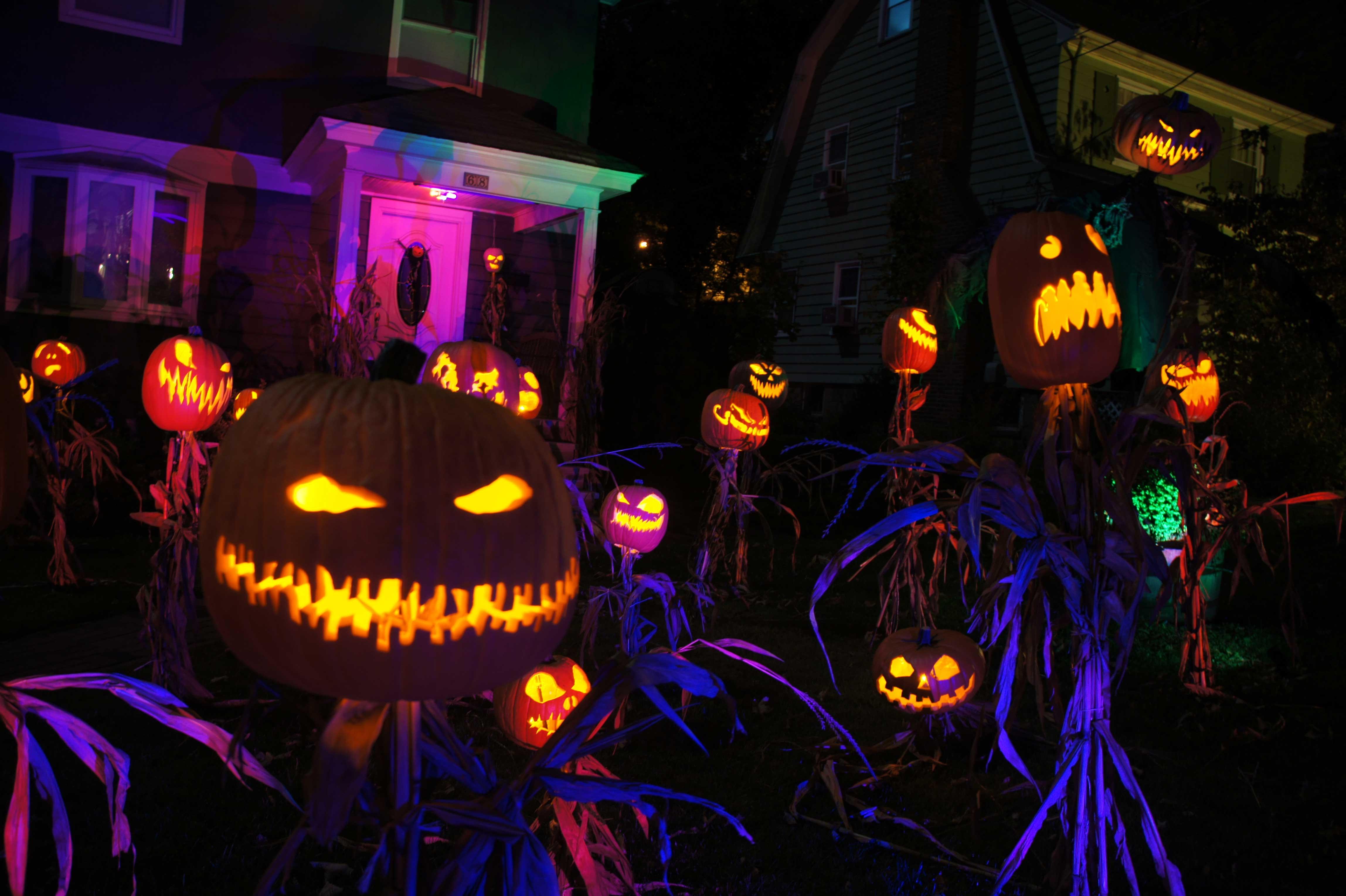 Must see Wallpaper Halloween Light - halloween-4592x3056-all-hallows-eve-all-saints-eve-pumpkin-fear-cap-994  Trends_92669.jpg
