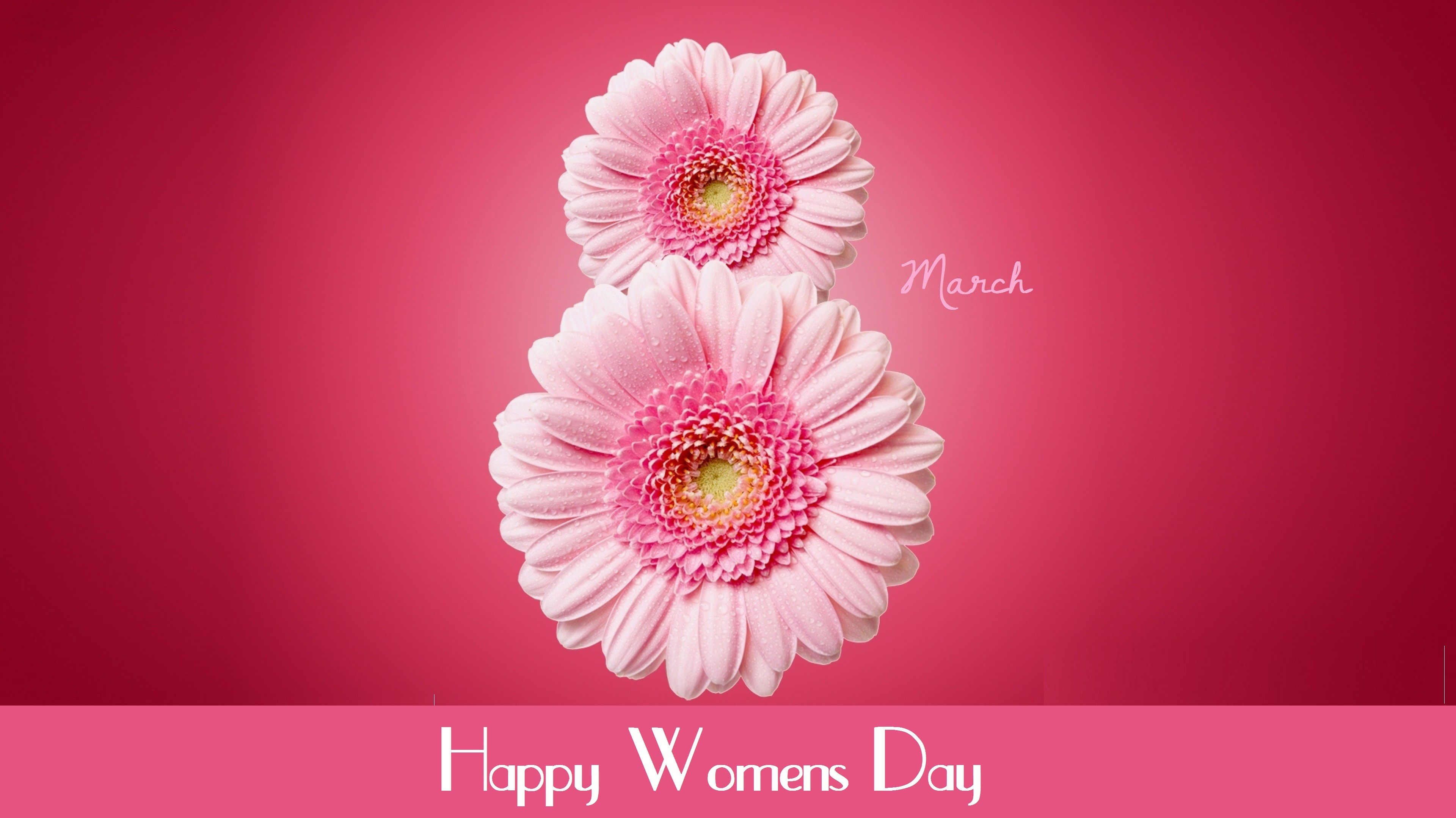 Your Resolution: 1024x1024. Resolutions: PC Mac Android iOS Custom. Tags: International Women's Day, March 8, flowers ...