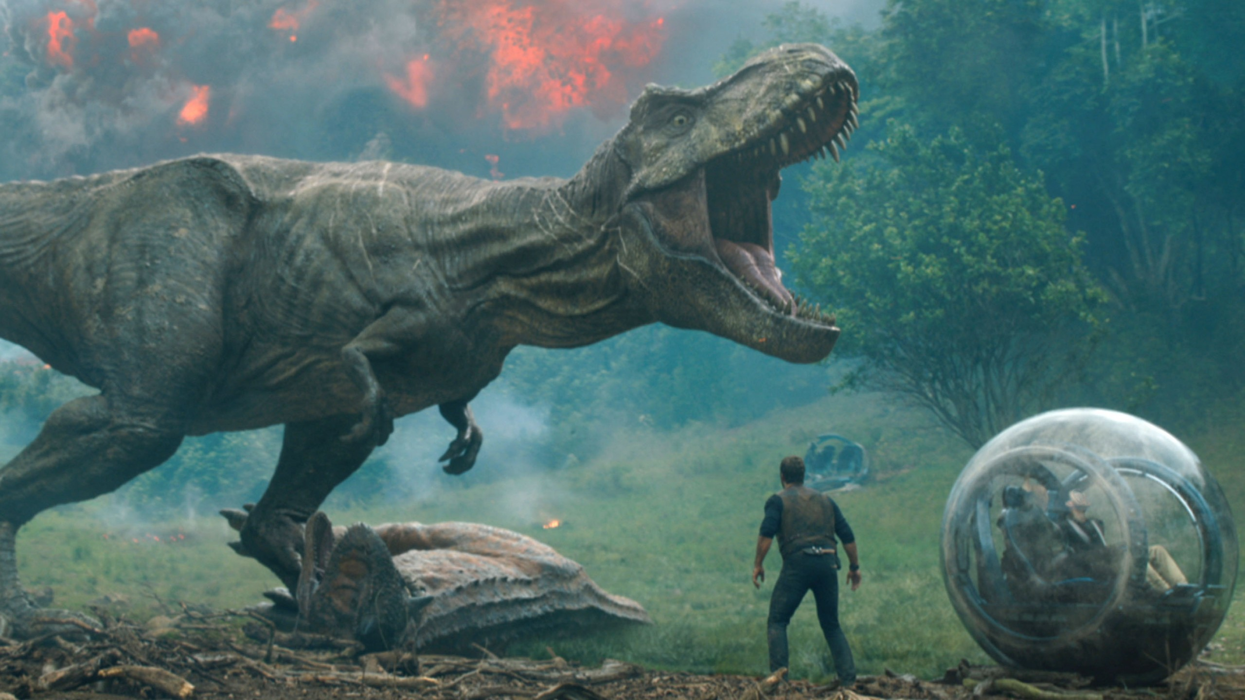 Wallpaper Jurassic World Fallen Kingdom Chris Pratt