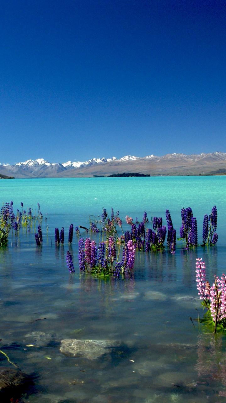 Wallpaper Lake Tekapo New Zealand Mountains 4k Nature
