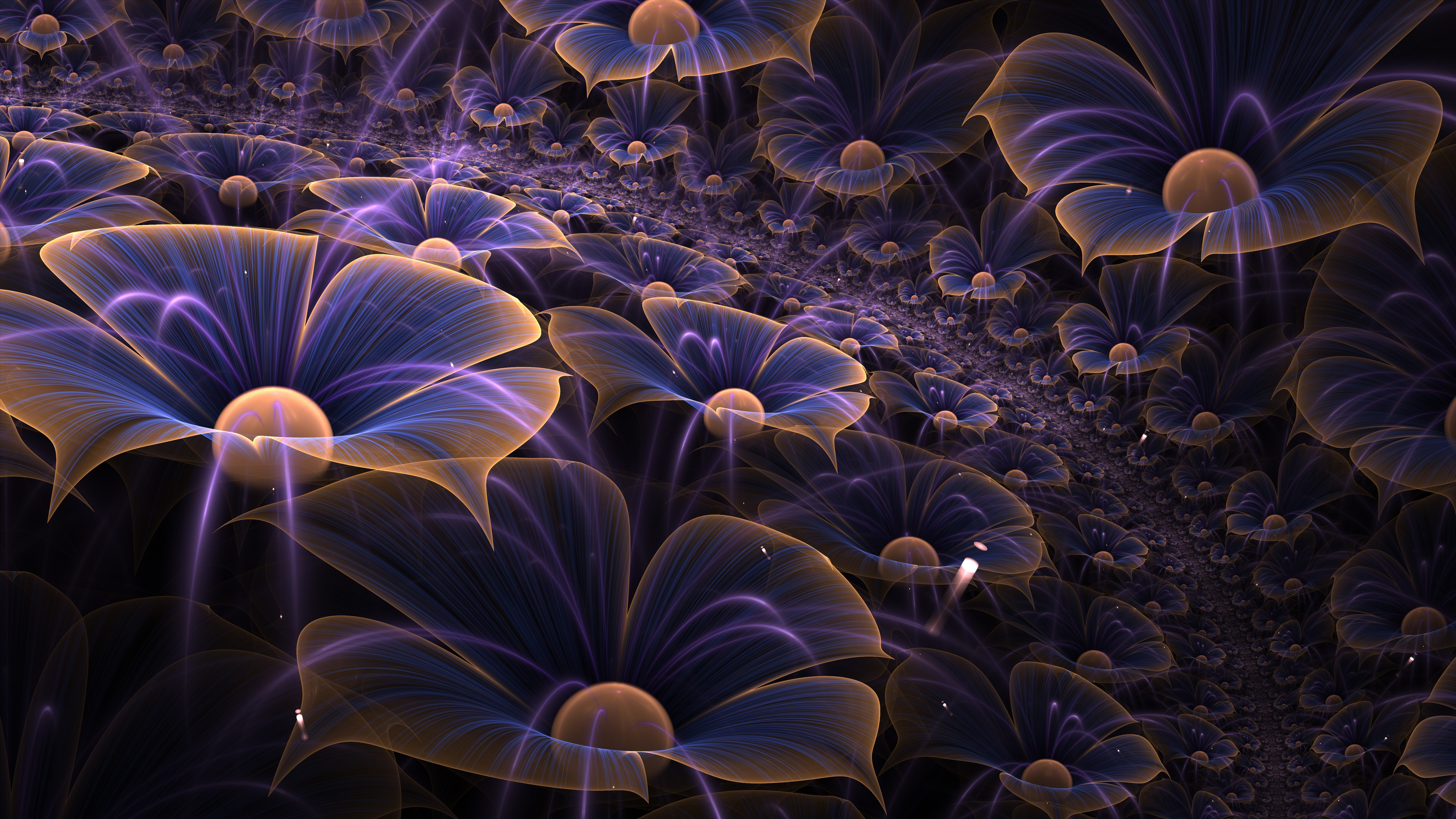 wallpaper macro digital art flowers art 11101