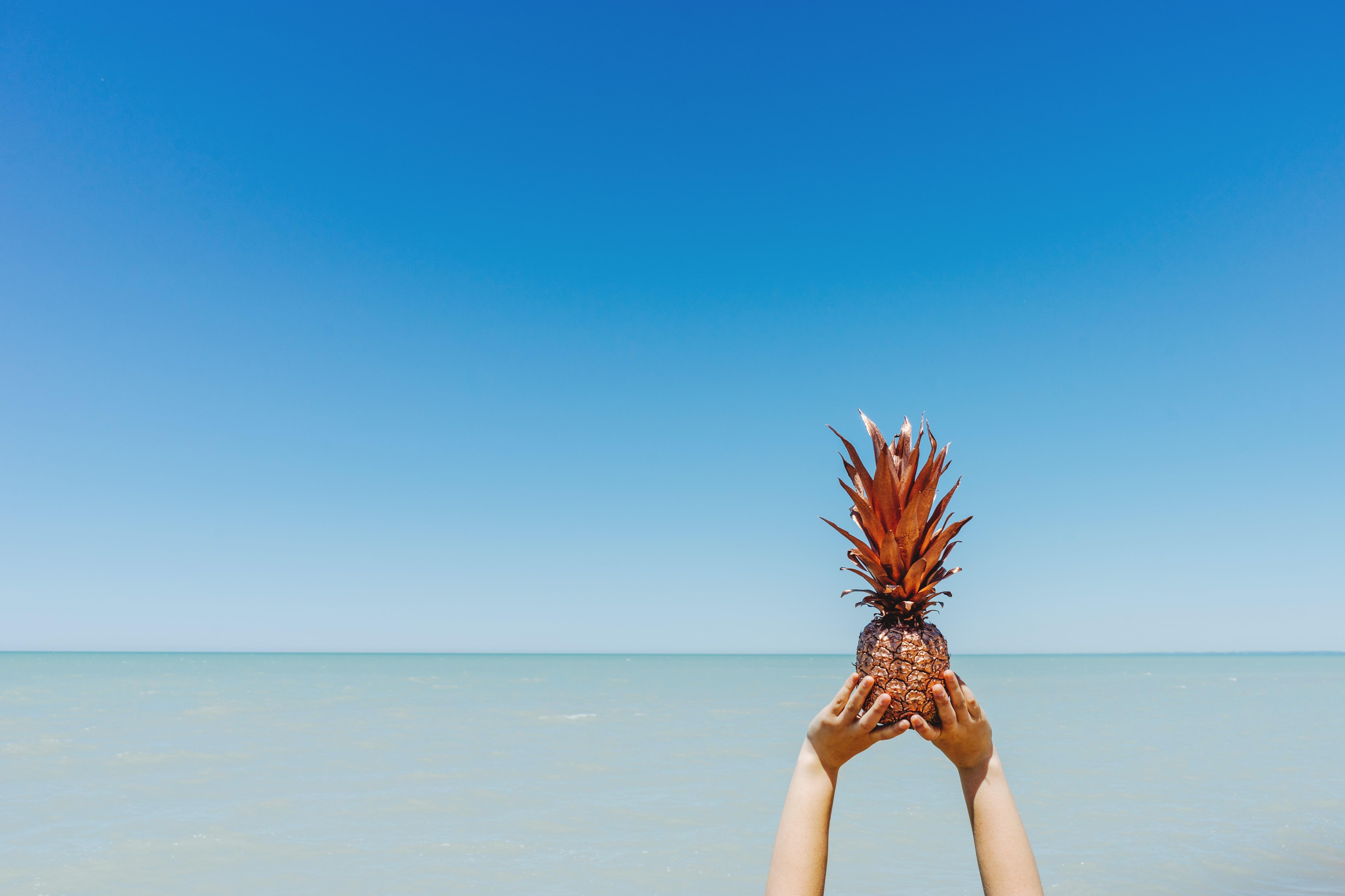 Amazing Wallpaper Mac Pineapple - pineapple-5974x3983-sky-ocean-5k-15338  You Should Have_45895.jpg