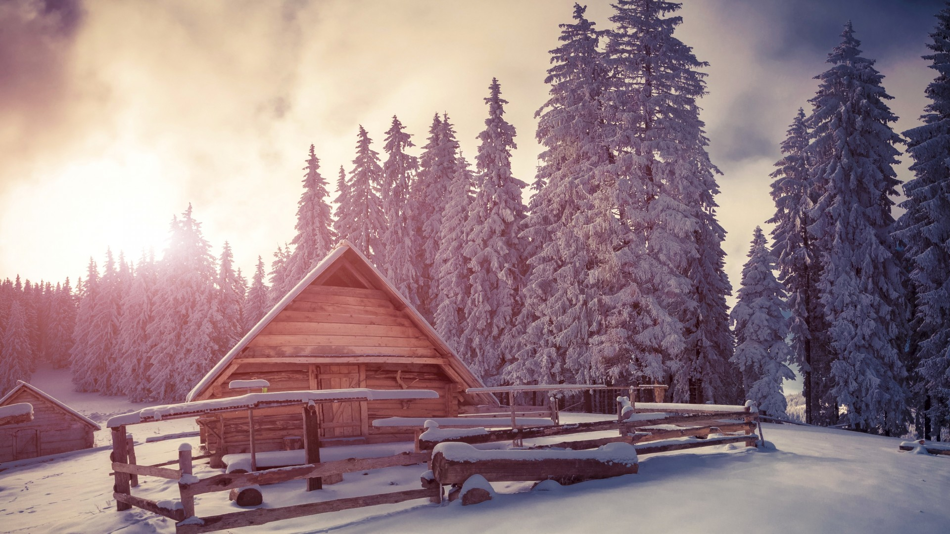 Wallpaper Pines 4k Hd Wallpaper Snow Sunset House