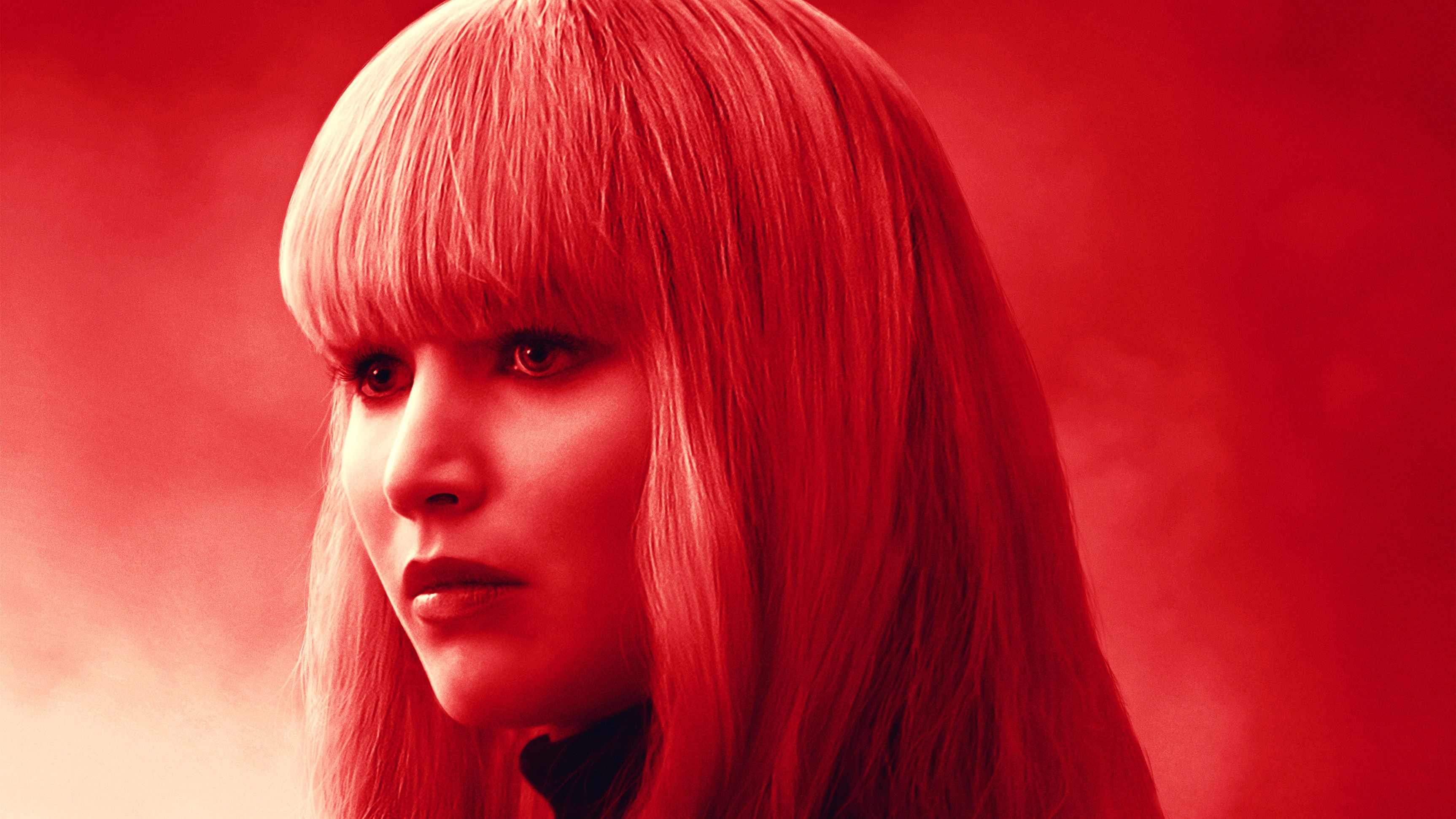 Wallpaper Red Sparrow,...
