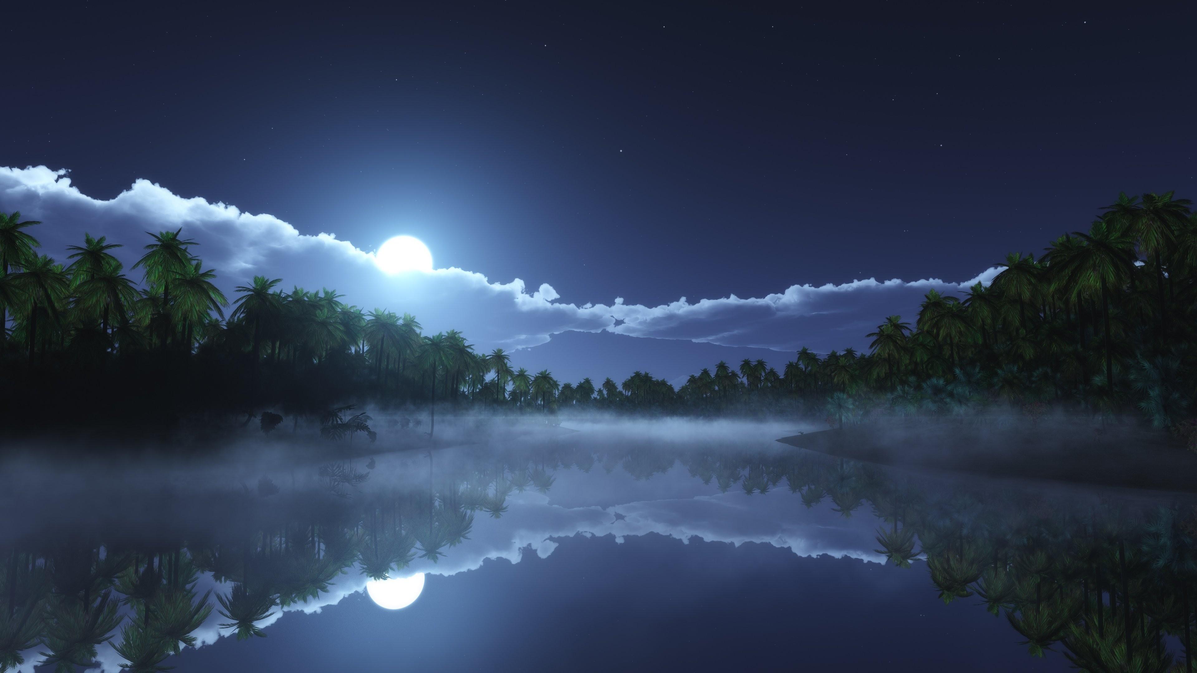 wallpaper river, 4k, hd wallpaper, sea, palms, night, moon, clouds