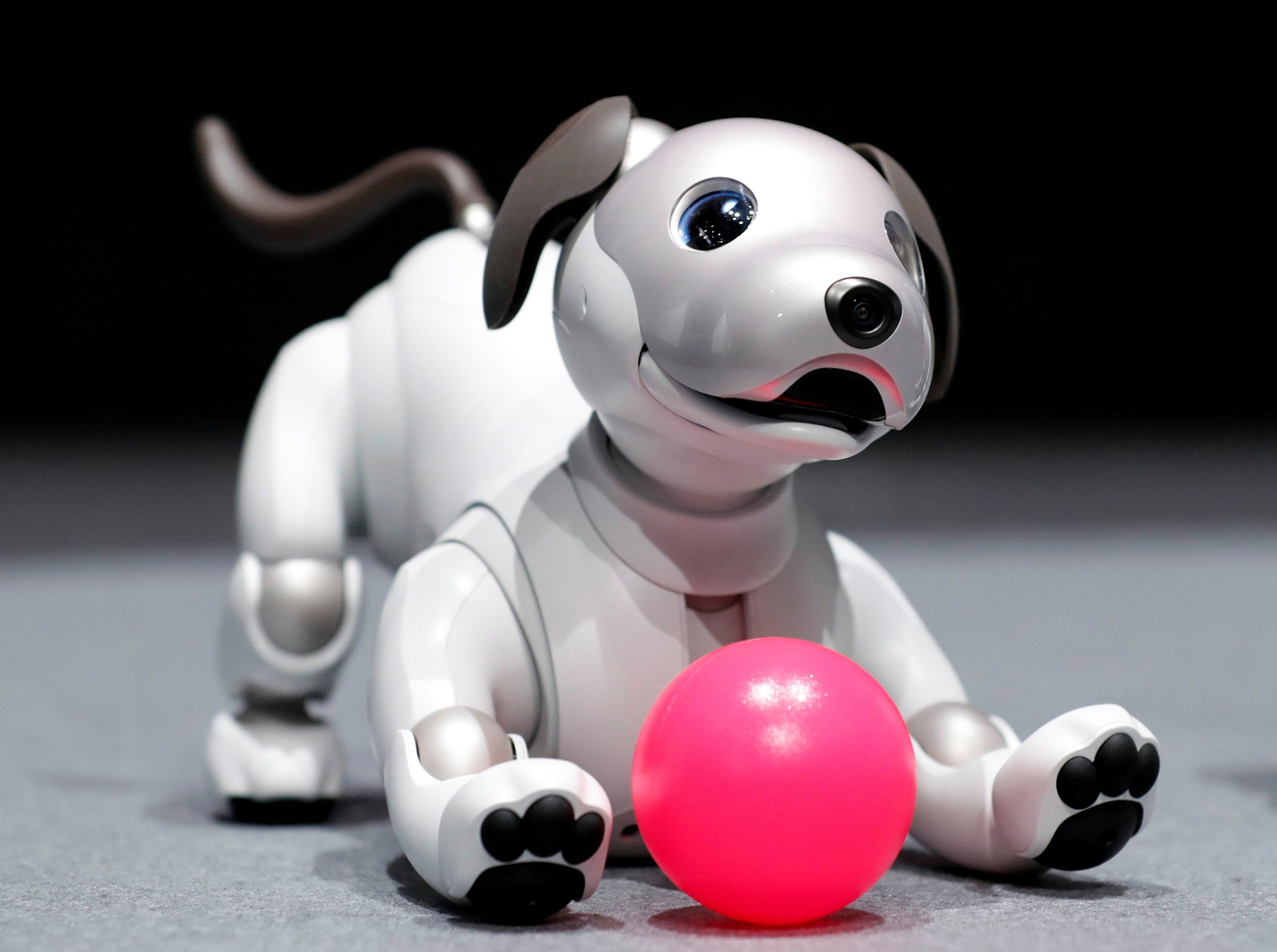 Wallpaper Sony Aibo, robot, dog, 4k, Hi-Tech #16415I've always believed that wallpaper  is a way to shape human perception.