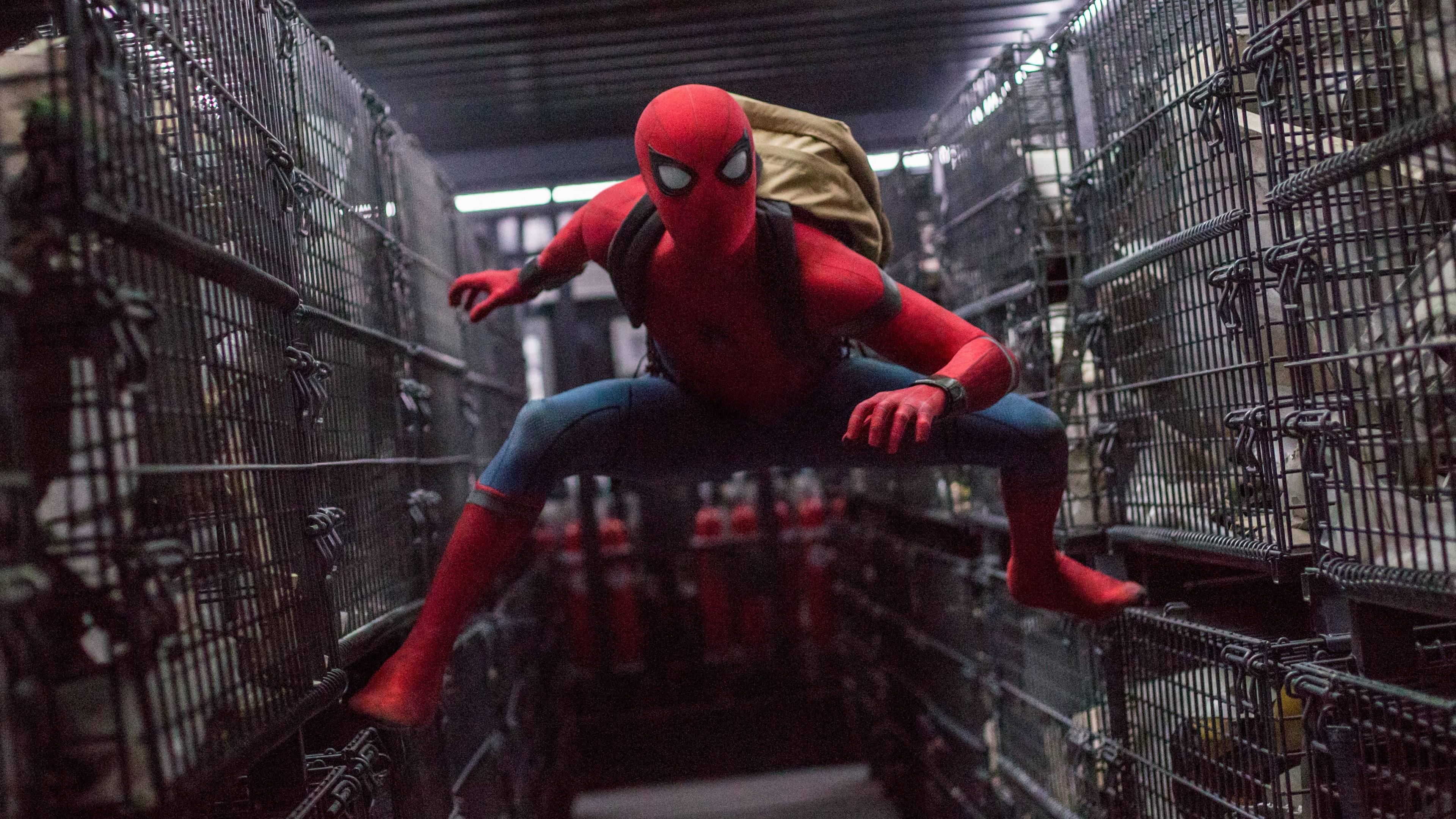 Wallpaper Spider Man Homecoming 4k 8k Tom Holland