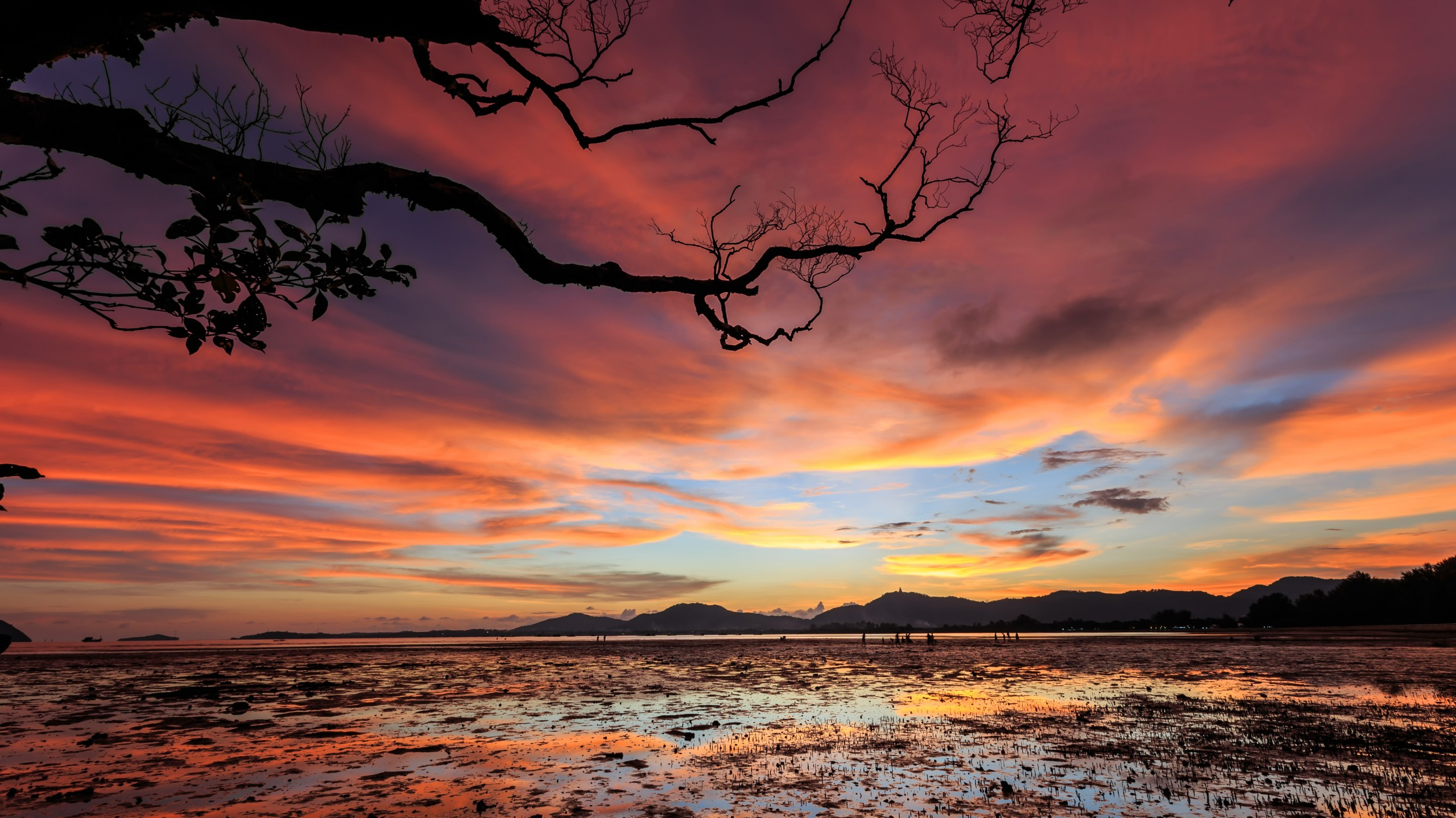Wallpaper Sunset, Clouds, 5K, Nature #19547