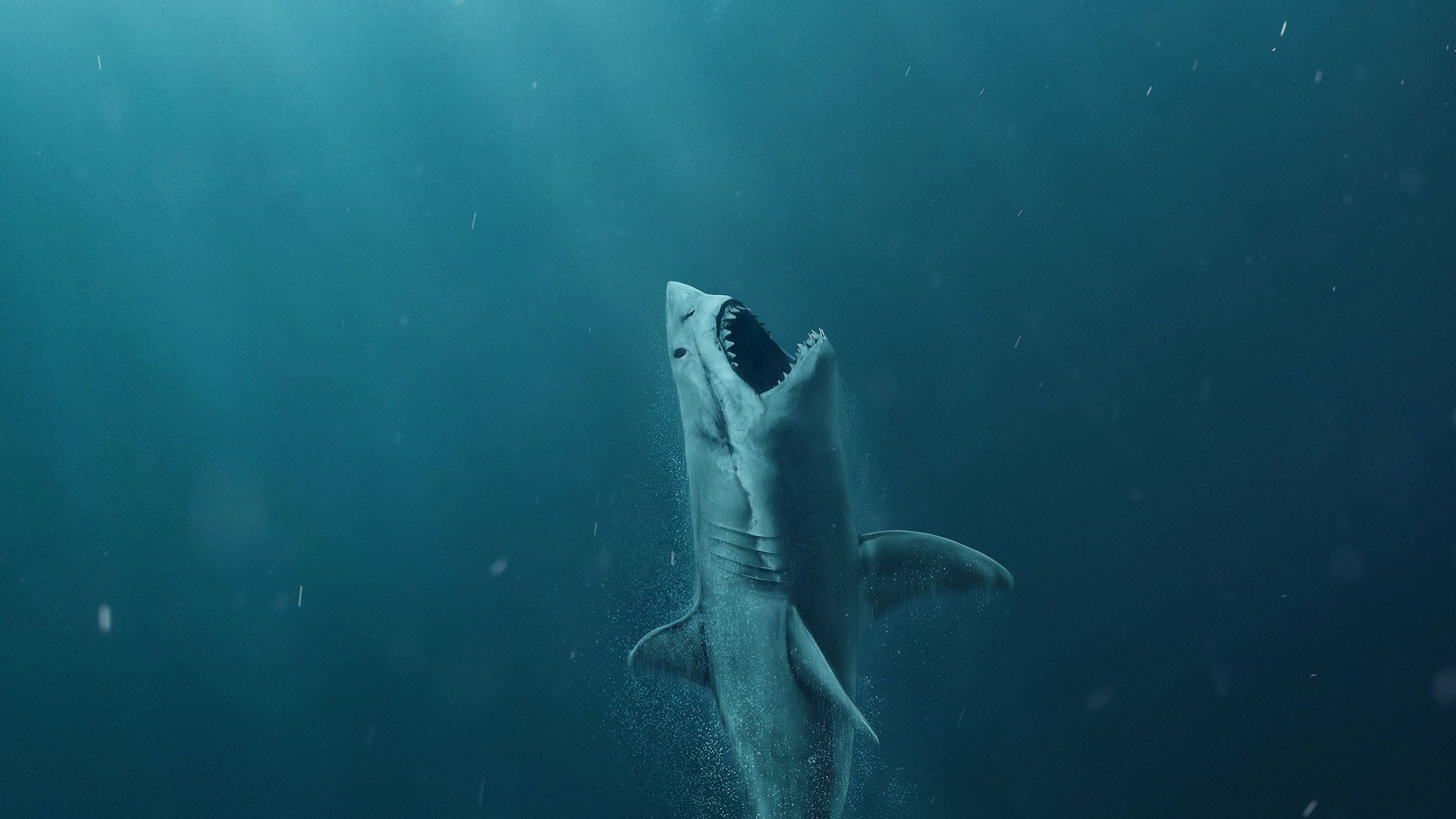 Wallpaper The Meg Shark 4k Movies 17983