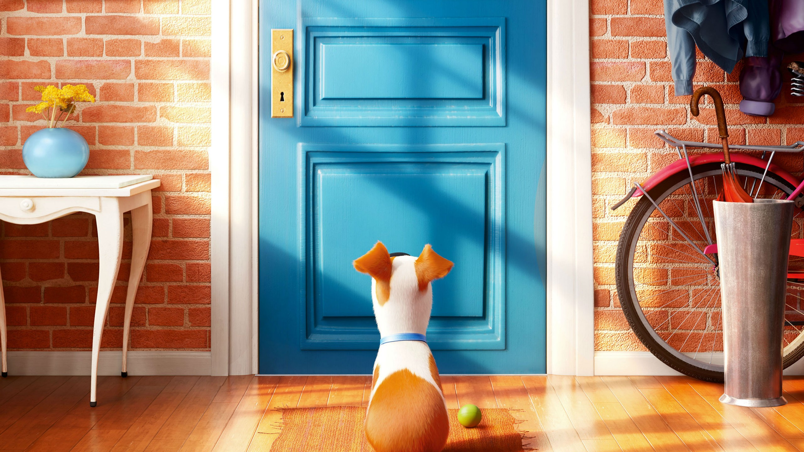 Wallpaper The Secret Life Of Pets Best Animation Movies Of 2016