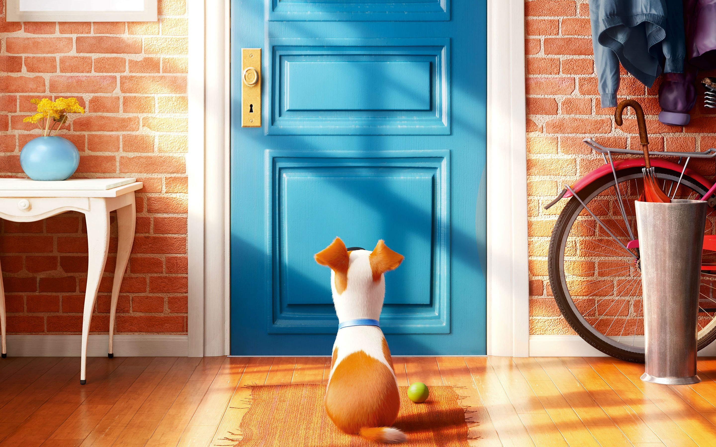 Wallpaper the secret life of pets best animation movies for Wallpaper 2016 home