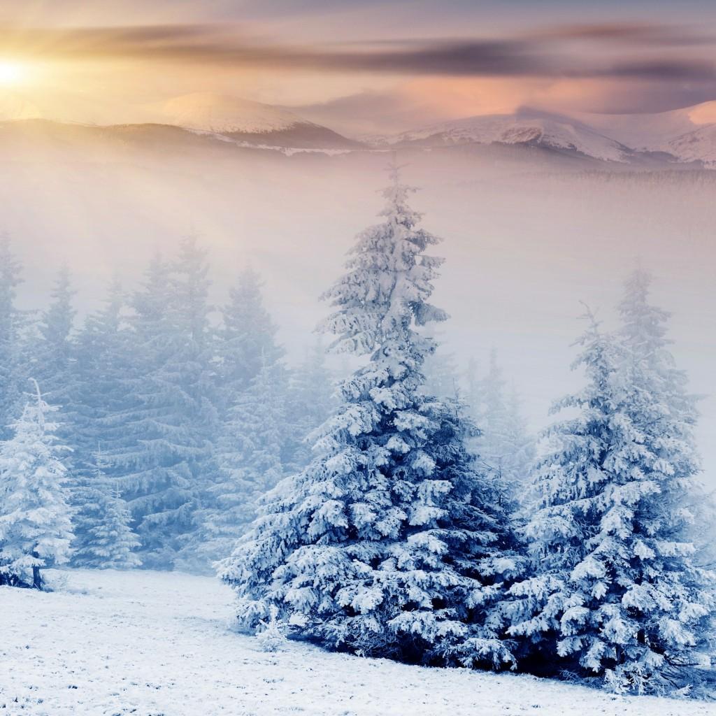 Photo collection mountain snow tree wallpaper - Photo wallpaper ...