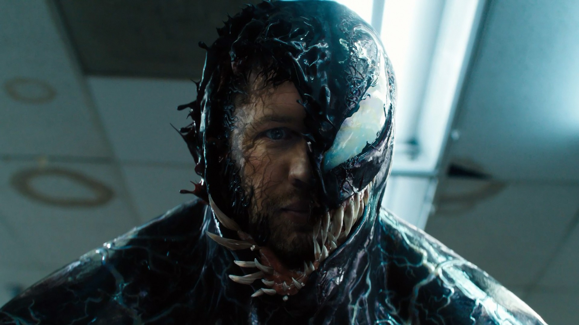Wallpaper Venom Tom Hardy 4k Movies 19990