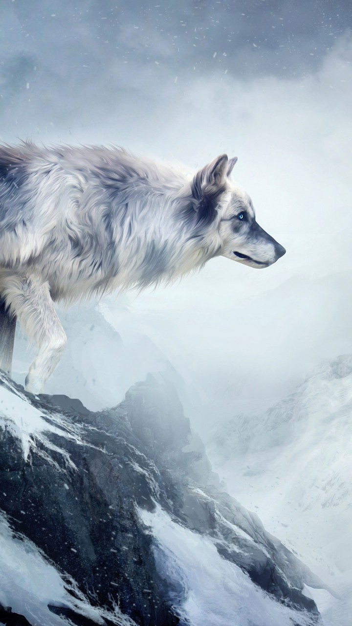 Wallpaper wolf 4k HD wallpaper mountain girl animals